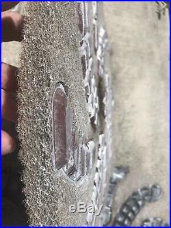 5 Cheetah 17 Diamond Polishing Pads. Concrete floor grinder polisher buffer